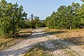 Flat area close to village Podkilavac, Risnjak National Park, Croatia 02.jpg