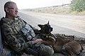 Flickr - DVIDSHUB - Afghanistan AEF 2012 (Image 1 of 15).jpg