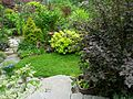 Flickr - brewbooks - Stairs to second level of our back garden.jpg