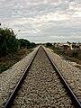 Flickr - nmorao - PK 347, Linha do Algarve, 2008.10.07 (1).jpg