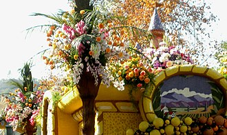 Pasadena Tournament of Roses Association - Flowers on a 2009 Rose Parade float