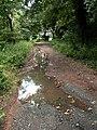 Flood damage on Silkstone Wagon Way. - geograph.org.uk - 481768.jpg