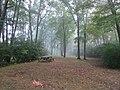 Foggy morning (7991059602).jpg