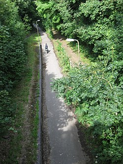 Fomer Bradwell Halt, July 2009.JPG
