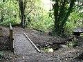 Footbridge, Harrison's Plantation - geograph.org.uk - 1001393.jpg