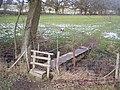 Footbridge near Chennell Park - geograph.org.uk - 1713759.jpg