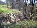 Footbridge near White Oak Hill - geograph.org.uk - 1516713.jpg