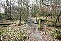 Footpath Through Rather Heath - geograph.org.uk - 1201471.jpg