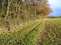 Footpath by Doles Wood - geograph.org.uk - 1069810.jpg