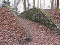 Footpath cut through bank in Wendover Woods - geograph.org.uk - 1180582.jpg