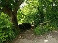 Footpath in Malham - geograph.org.uk - 1355566.jpg