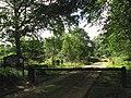 Footpath through Haveringland Wood - geograph.org.uk - 552529.jpg