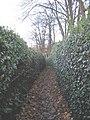 Footpath to Plas Newydd - geograph.org.uk - 1063725.jpg