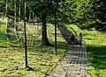 Footway - panoramio (7).jpg