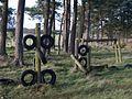 Forest playground - geograph.org.uk - 269296.jpg