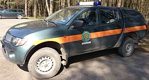 Forest protection - Forest security in Lithuania