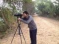 Forest safari.jpg