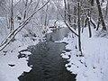 Forsån vid Forsallén, vinter.jpg