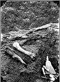 Fossils, whisk broom, picks (3568194082).jpg