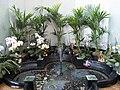 Fountain in Burgh Island Hotel-17709140176.jpg