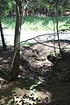 Foxholes - Bois Jacques - Bastogne - 14.jpg