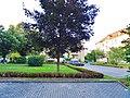 Fritz Ehrlich Straße, Pirna 123017106.jpg