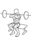 Front-squat-to-bench-2-858x1024.png