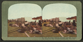 Ft. Mason refugee campers and their belongings saved from the flames of burning San Francisco, from Robert N. Dennis collection of stereoscopic views.png