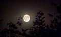 Full moon 6-8-2009 (3805217424).jpg