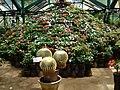 GBG Flower arrangement.JPG