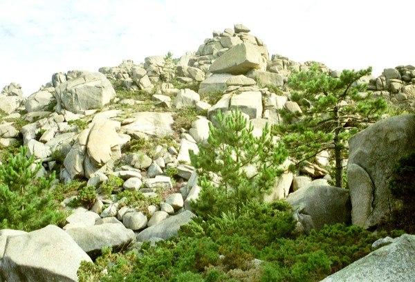 Galice granit