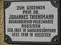 Gangloffsömmern Thienemann.JPG