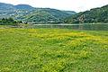 Gazivoda Lake - 7802 03.jpg