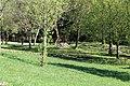Geeste - Biener Straße - Speicherbecken - Trailpark 03 ies.jpg