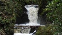 Fichier:Geroldsauer Wasserfall 2020-03-13.webm