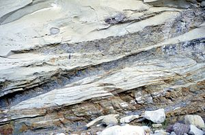 Lowe sequence - Image: Giant shale rip up, Cozy Dell Fm
