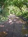 Gillett's Lane - geograph.org.uk - 935839.jpg