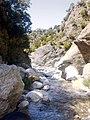 Gimello - creek - 11.jpg