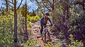 Girdner Trail (39128121005).jpg