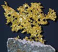 Gold (DeMaria Mine, Placer County, California, USA) 2 (16877702509).jpg