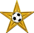Golden Barnstar of football.png