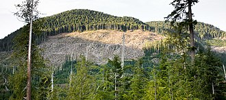 Overexploitation - Clear cutting of old growth forests in Canada.