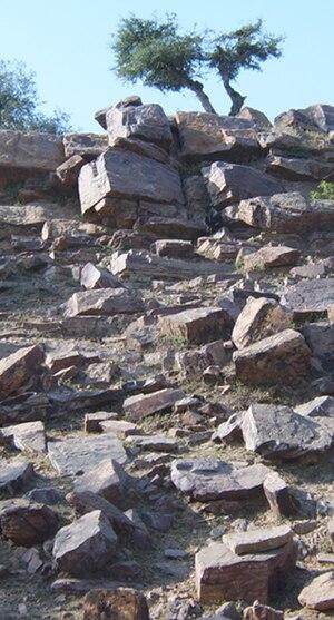 Madhavendra Puri - Close-up of Govardhan hill, Vrindavan, area where Madhavendra puri worshiped Bala-Gopala