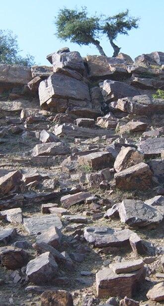Govardhana sila - Close-up of Govardhan hill with Silas, Vrindavan
