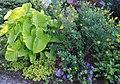 Green Spring Gardens in September (22170315793).jpg