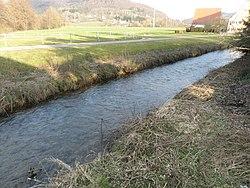 Högenbach kurz vor der Mündung in der Pegnitz 10.03.2016 16.09.01.jpg