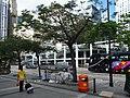 HK Central 中環 Edinburgh Place trees May-2012.JPG
