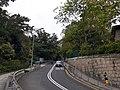 HK ML 香港半山區 Mid-levels 雅賓利道 Albany Road April 2020 SS2 03.jpg