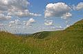 Hambledon Hill 20080614.jpg