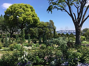 Yamate - View from Harbour View Park, Yamate towards the Yokohama Bay Bridge